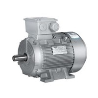 AGEN ELECTRIC MOTOR SIEMENS CHINA PT DUTA MAKMUR