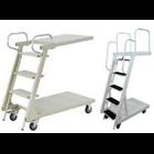 Loaded Ladder Trolley  3