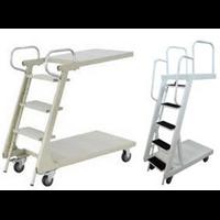 Distributor Loaded Ladder Trolley  3