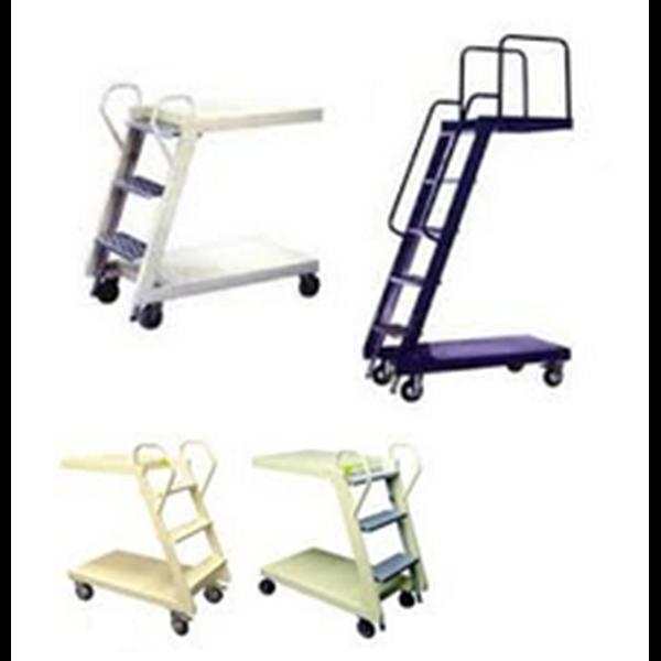 Loaded Ladder Trolley