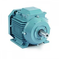 Abb Notors IEC Low Voltage Motor 1