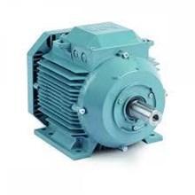 Abb Motors IEC Voltage Motor