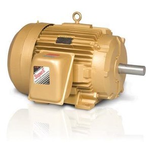 Abb Nema Low Voltage AC Motor