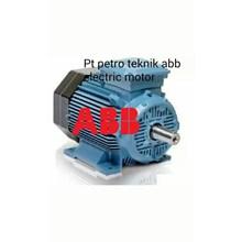 ABB ELECTRIC AC MOTOR