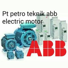 ABB ELECTRIC AC MOTOR 60 HZ