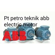 AGENT ABB ELECTRIC MOTOR PT PETRO TEKNIK