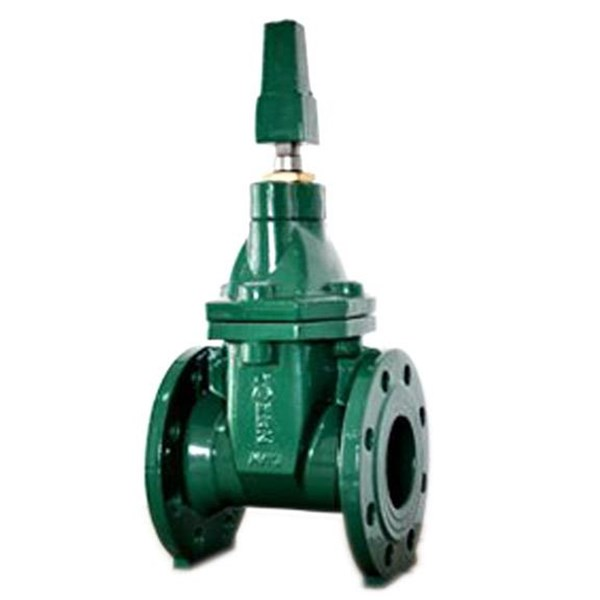 Class 125 Nrs Resilent Seat Gate Valve