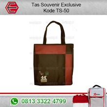 The Souvenir bag code: TS-50