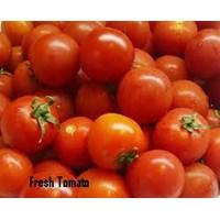 Jual Sayuran Segar 2