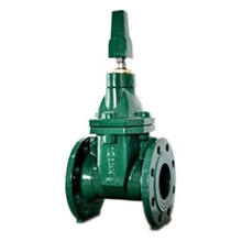 Gate Valve Resilent Seat Class 125 NRS