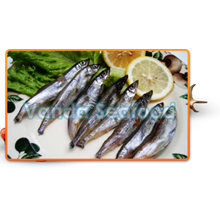 Ikan Shishamo atau Capelin