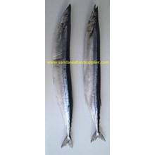 Ikan Sanma