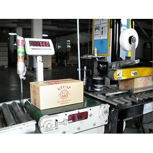 Checkweigher Belt Conveyor For Cortoon Box