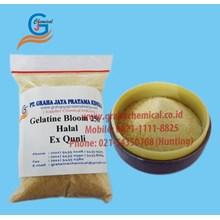Gelatine Bloom 250 Halal - Ex Qunli