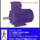 Compact Gear Motor -  KMP JMB Explosion Motor