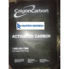 karbon aktif Calgon F 100 1