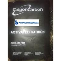 karbon aktif Calgon F 100
