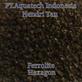 Ferrolite Filter air