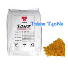 Cation Resin Tulsion T40Na