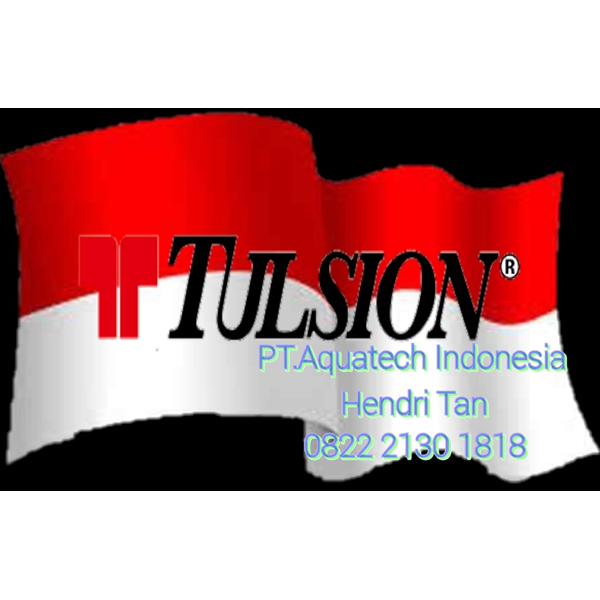 Cation Resin Tulsion T42H