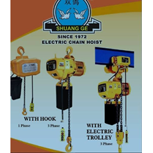 Electric Chain Block Hoist With Hook WHD5-02-01S S