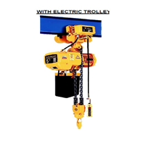 Electric Chain Block Hoist With Trolley WHD5-02-01