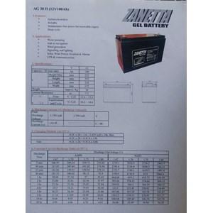 Dari PJU solar cell 60W SNI-060TS 1