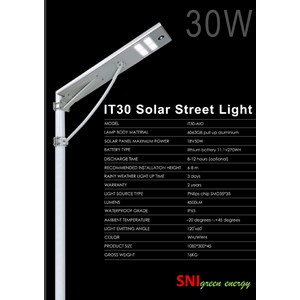 lampu jalan all in one 30W