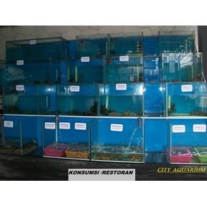 jual akuarium surabaya By City Aquaworld Surabaya