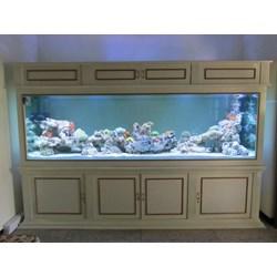 jual akuarium air laut