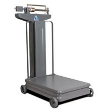 Scales Mechanical TBI