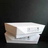 Jual Lunch Box paper ukuran M harga murah 2
