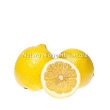 Buah Segar Jeruk Lemon Import Distributor Grosir S