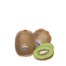 Buah Segar Kiwi Hijau Distributor Grosir Supplier Agen Buah Import