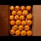 Buah Segar Jeruk Mandarin Kino Distributor Grosir Supplier Agen Buah Import