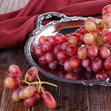 Buah Segar Anggur Merah Red Globe Distributor Grosir Supplier Agen Buah Import