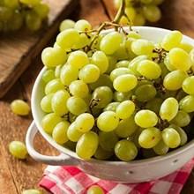 Buah Segar Anggur Hijau Distributor Grosir Supplier Agen Buah Import
