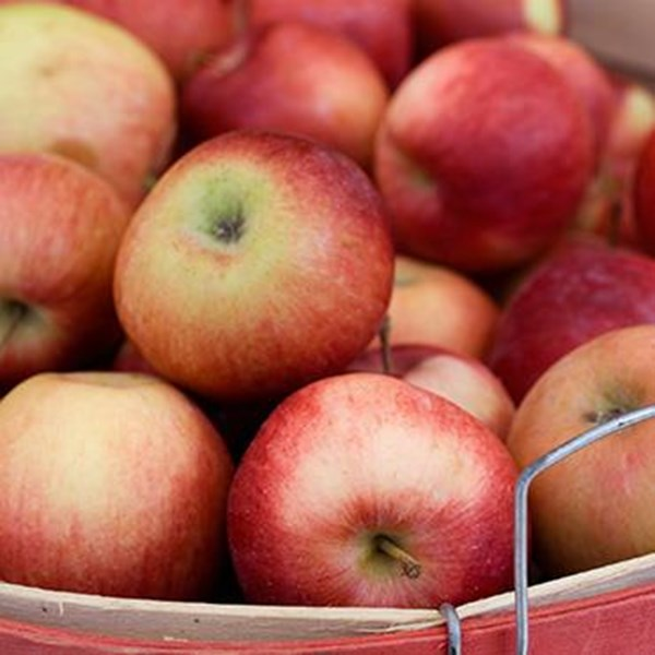 Sell Apple Pacific Beauty Wholesale Distributor Supplier Agent For