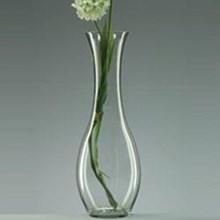Glass Vase Boga - DC