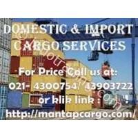 Lumpsum Import  Service Delivery