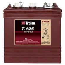 Trojan Battery battery Type T-125