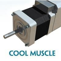 Stepping Motor Terpadu CM1 COOL MUSCLE