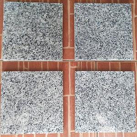 Jual Granit Bianco Sardo