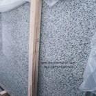 Granit Putih Bintik Hitam Bianco Perla Granit Alam China 2