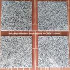 Granit Putih Bintik Hitam Granit Bianco Sardo Granit Putih China 3