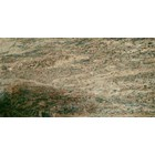 Granite Yellow Granite Leopard Gold Granite Yellow Import-Slab 1