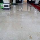 Marmer Ujung Pandang Marmer Makasar Cream Light Marmer Lokal-Slab 4