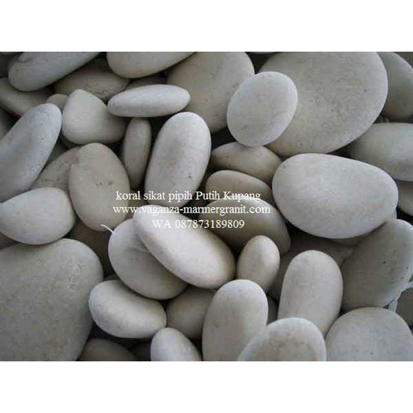 Batu Alam Koral Sikat Gepeng