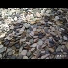 Batu Alam Koral Sikat Kerikil 7