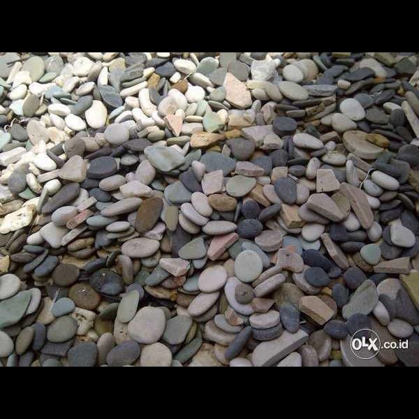 Batu Alam Koral Sikat Kerikil